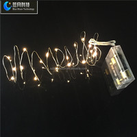 2meters20leds micro led copper wire string lights for Xmas day wedding
