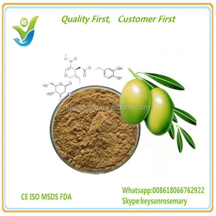 Natural Olive Extract Wholesale, High quality 40% oleuropein Olive leaf extract