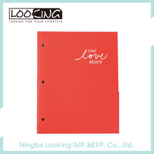LOOKING Novelty A4 Clear Paper File Folder Document Holder