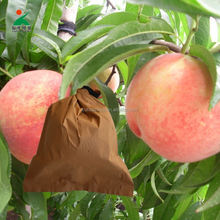 Peach Fruits Picking Protection Bag