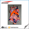 Sublimated Swimwear One Piece Swimsuit Customized Swimming Suits