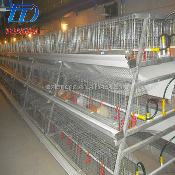 Brand new laboratory animal cage with high quality