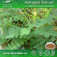 Factory supply Astragalus extract/Astragaloside 98%/Astragalus powder/Increase endurance plant extract