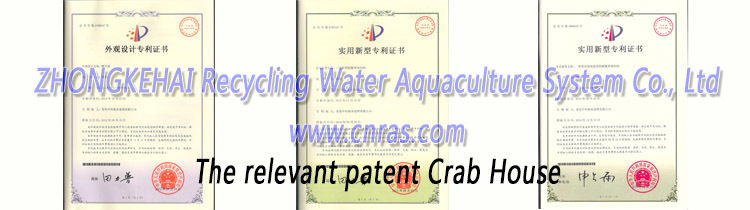 China new Three-dimensional indoor recirculating aquaculture Crab House