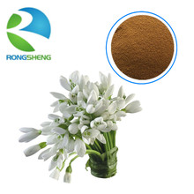 High quality natural snowdrop extract