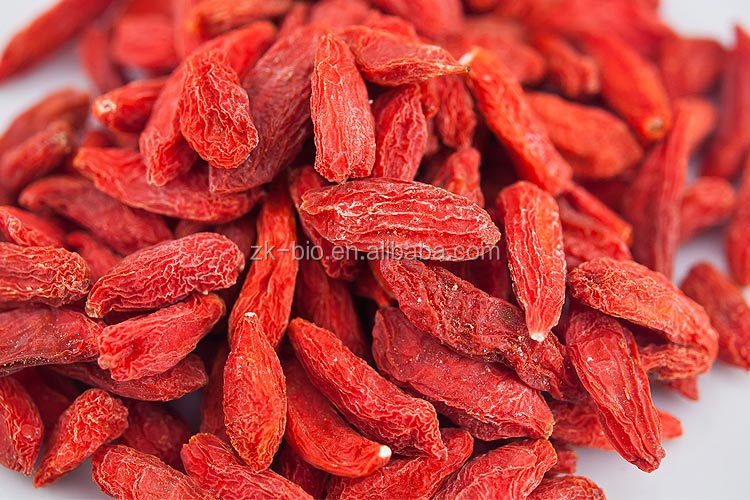 High Quality Natural Organic Goji Berries Supplier