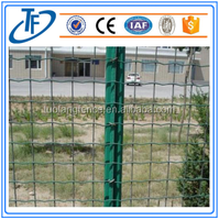 High quality holland wire mesh with low price