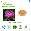 80% silymarin pure natural high quality milk thistle seed extract