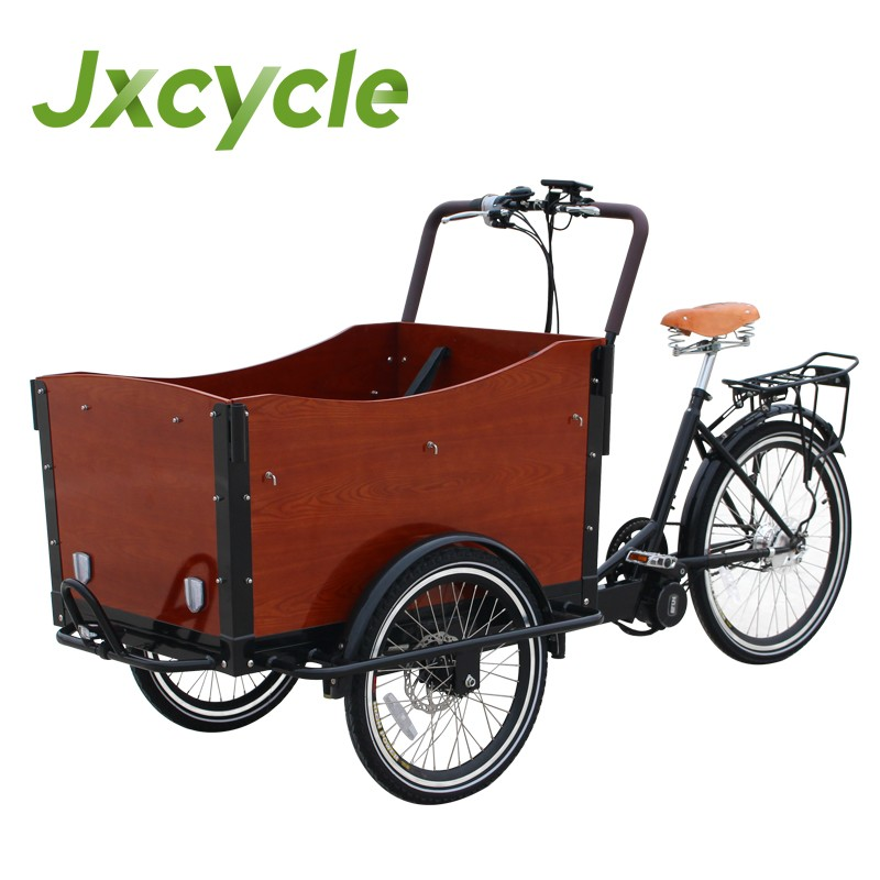 electric Bike tricycle auto 3 wheel trike for family