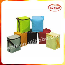 high quality new style thermal isolation bags for transporting ice/hot food