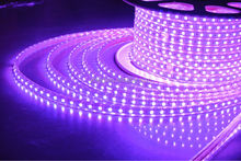 Good quality hot sale high voltage waterproof LED smd3528 uv led rope ultraviolet light