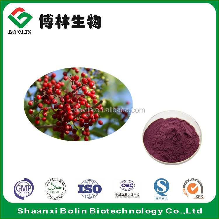 Black Elderberry Extract P.E. 25% Anthocyanins HPLC for Bone Health