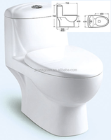 One-piece Dual Flush Water-saving Ceramic One-piece Water Closet Y082