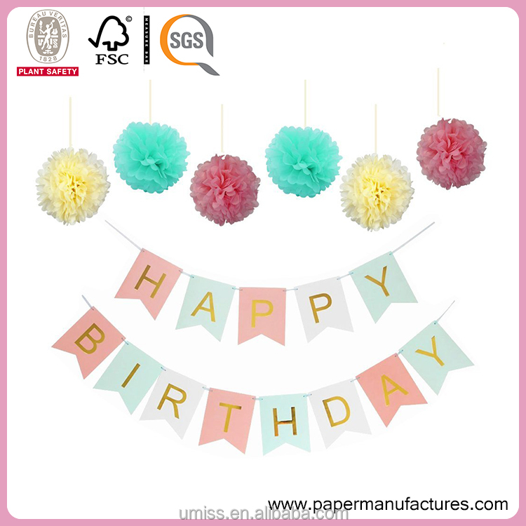 Umiss Pastels Party Decorations Happy Birthday Bunting 13 flags Banner ,Set of 6 Tissue Paper Pom Poms