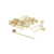 Disposable bbq tools bamboo loop skewer