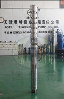 5'' submersible well motor pump in stainless steel