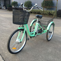 3 wheel tricycle cargo mobility scooter