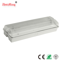 Industrial Wall or Ceiling Mounted T5 1*8W Emergency Lighting Fixture Emergency Light