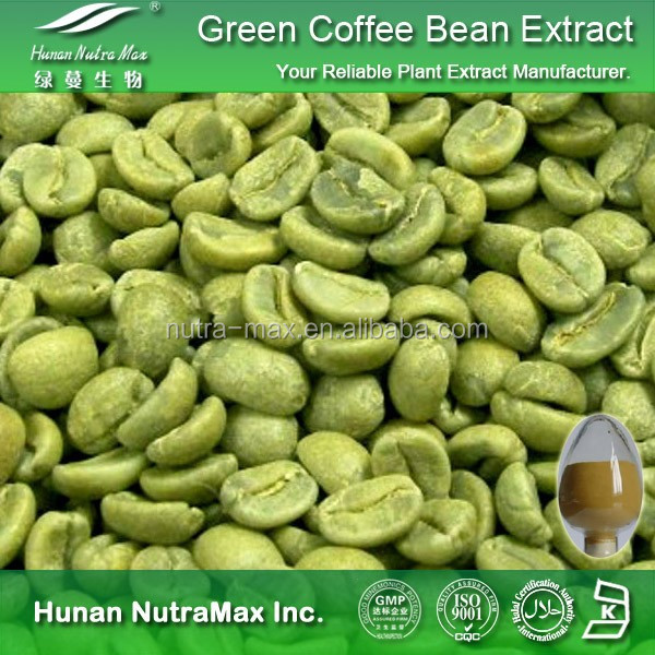 100% Natural Green Coffee Bean Plant Extract,Green Coffee Bean Plant P.E.