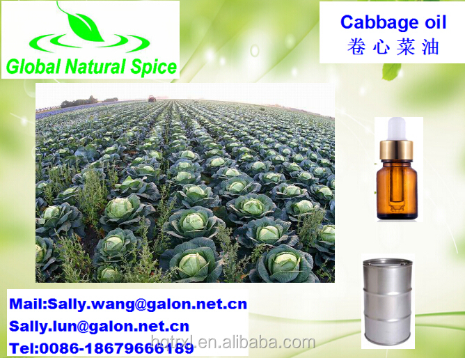 Natural cabbage oil/cabbage vegetable oil most selling product in alibaba