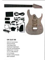 DIY Electric guitar GK SJS 100
