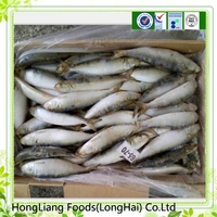 2015 good quality frozen sardine