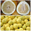 2015 Chinese Fresh Pomelo Honey Pomelo Juicy Pomelo for sale