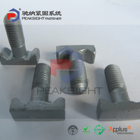 Low Price Steel T Bolt