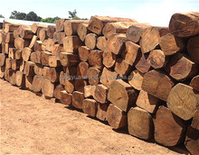 Nigeria Kosso, hot and bulk sale, cheap and high quality, furniture grade square logs