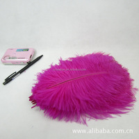 20-25cm Beautiful Dyed colors and White Ostrich Feathers for Wedding Party Decoration