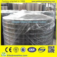Galvanized Welded Wire Mesh ( Directly Factory)