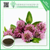 China Manufacture 12% Isoflavones Red Clover Extract with low price