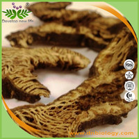 High quality Black Cohosh Extract 2:1 3:1 4:1 for health supplement
