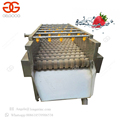 Industrial High Qulaity Strawberry Washing Machine Blueberry Cleaning Machine