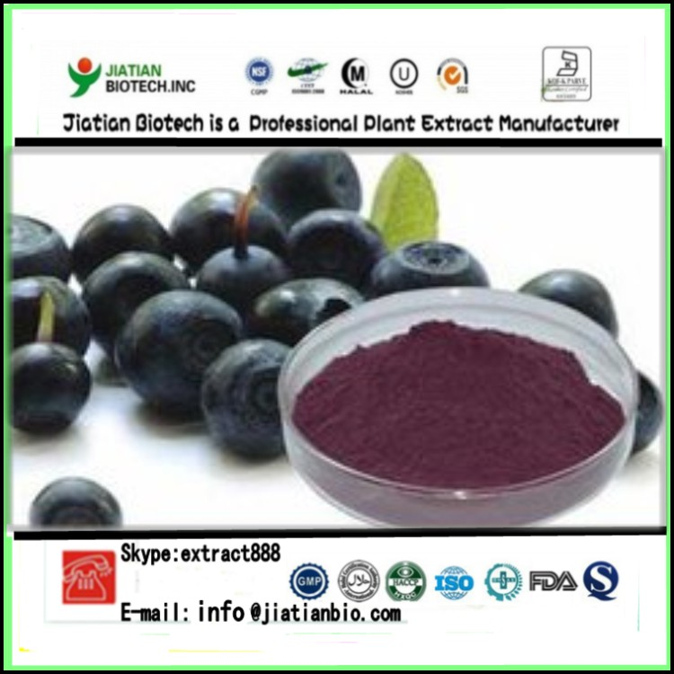 Factory supply Good Water soluble 100% Natural Acai Berry Juice Powder