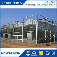 SINOLINKING Low Cost Polytunnel Glass Green
