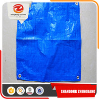 China all kinds PE heavy tarpaulin sizes