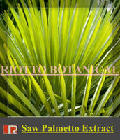 Nature Saw Palmetto Extract, Fatty Acids 25%-45%, manufacturer supply