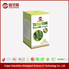 Anti Cancer green tea extract softgels