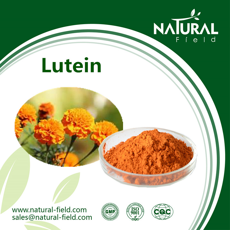 High quality calendula extract lutein/zeaxanthin from Marigold extract 5% 10%20% 40%,Cas No.144-68-3