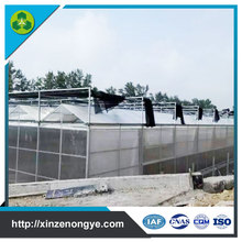 light deprivation commercial polycarbonate greenhouse