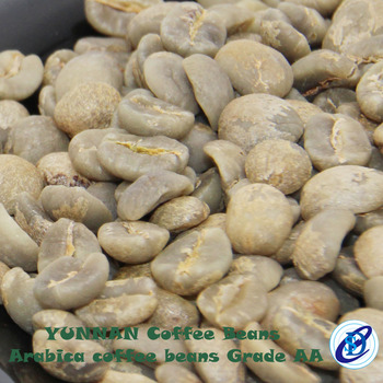 Common processing best price arabica green coffee beans