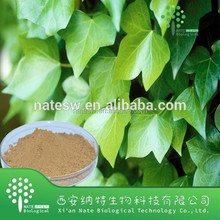 Free Sample Hedera Helix Extract Hederagenin 10%