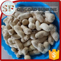 Red coral organic peanuts in shell