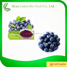 Acai berry extract powder 4:1 10:1 20:1 used in energy drink