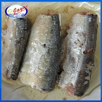Good quality best canned sardine