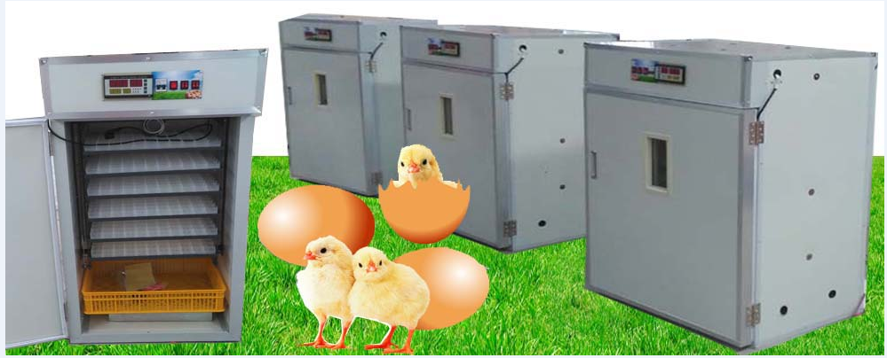 HJ-I24 CE approved professional industrialc automatic 19712 quail egg incubator