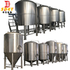 3000L high quality craft beer brewery plant manufactured in China