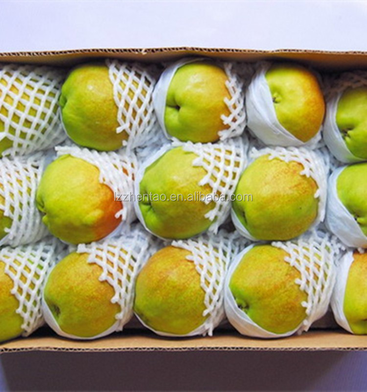 Factory direct sale high quality foam net for fruit packing