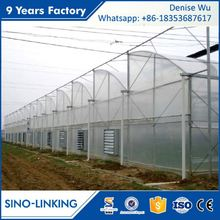 SINOLINKING Agricultural hydroponic strawberry greenhouse farming for sale